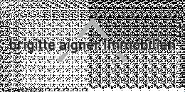 Brigitte Aigner Immobilien - Immobilen Makler